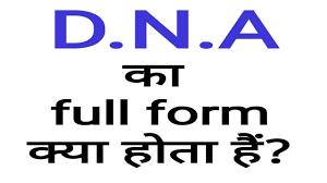 DNA Full Form: जानें DNA का फुल फॉर्म क्या है और DNA की खोज किसने की?